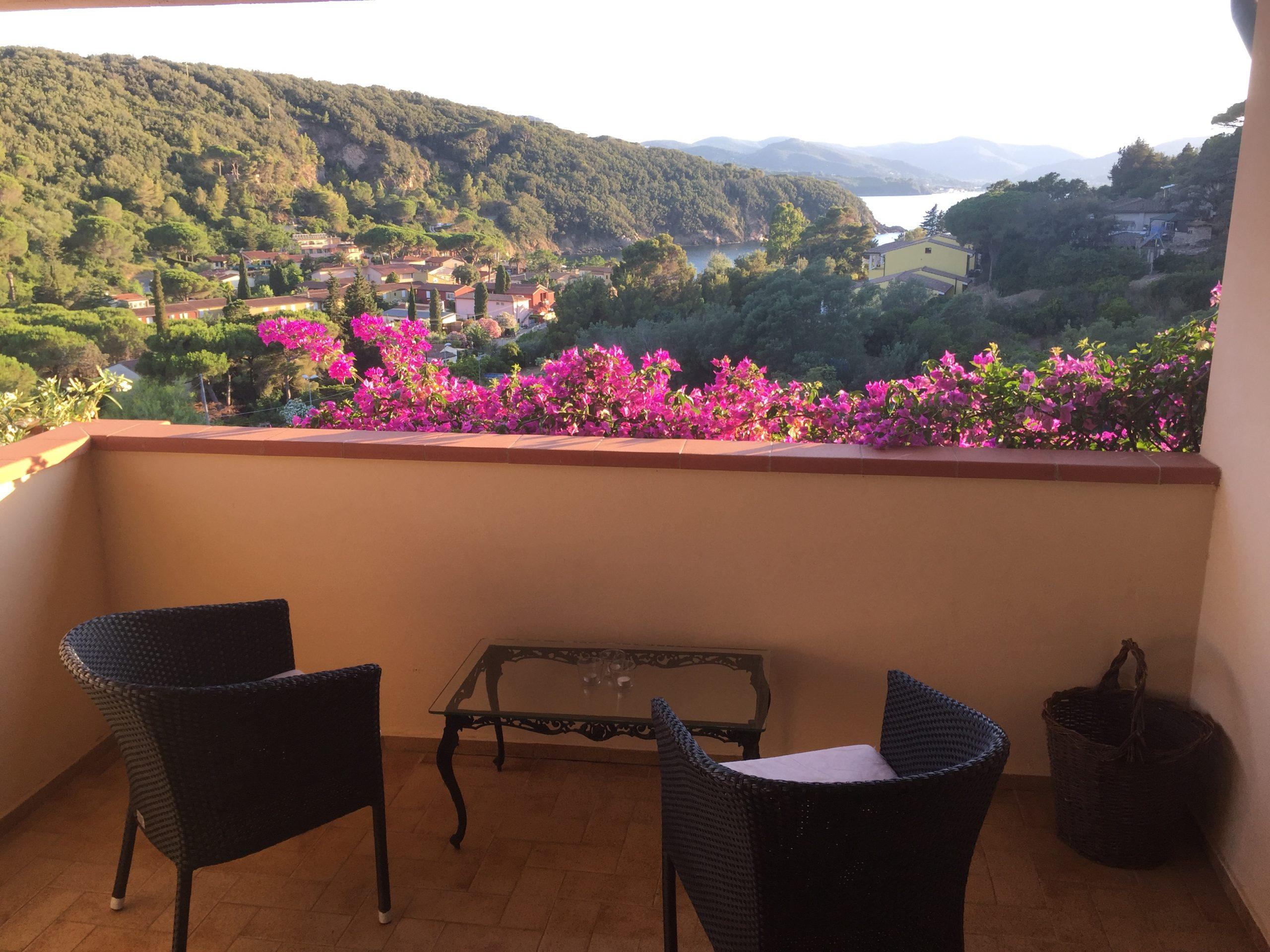 Hibiscus10-Terasse-Segelzentrum-Elba